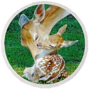 Pere David Deer And Fawn Round Beach Towel