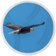 Perfect Bald Eagle Round Beach Towel