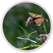 Perfect Monarch Round Beach Towel