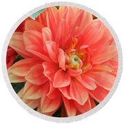 Perfect Petals Round Beach Towel