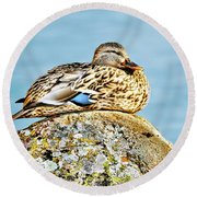 Perfect Resting Rock Round Beach Towel
