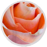 Perfection In A Peach Rose Round Beach Towel