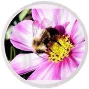 Persistence Into October Round Beach Towel