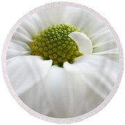 Petal Pillow Round Beach Towel