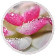 Petals And Droplets Round Beach Towel