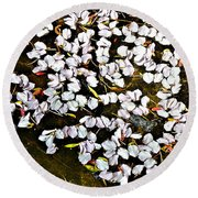 Petals In The Pond Round Beach Towel