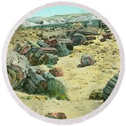 Petrified Forest Round Beach Towel