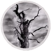 Petrified Tree Round Beach Towel