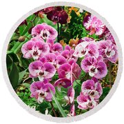 Phalaenopsis Orchids Round Beach Towel