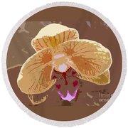 Phalaenopsis Synopsis Round Beach Towel
