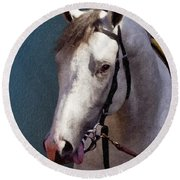 Phantom Lover - Portrait Of A Race Horse Round Beach Towel