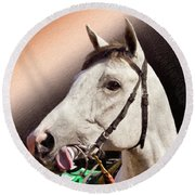 Phantom Lover Race Horse Looking On Round Beach Towel