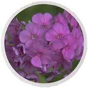 Phlox Nicky Round Beach Towel
