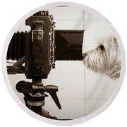 Pho Dog Grapher - Ground Glass View Round Beach Towel