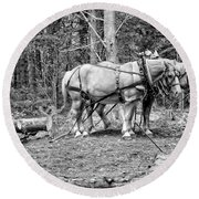 Photograph Of Horses Pulling Logs In Maine Forest Round Beach Towel