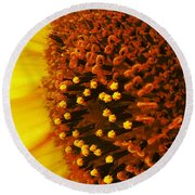 Photon Torpedoes Primed Round Beach Towel