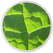 Photosynthesis  Round Beach Towel