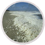 Phytoplankton Bloom On Beach Round Beach Towel