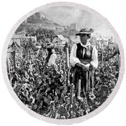 Picking Grapes In Switzerland Round Beach Towel