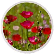 Picture Perfect Poppies Round Beach Towel