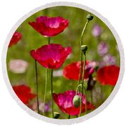 Picture Perfect Too Round Beach Towel