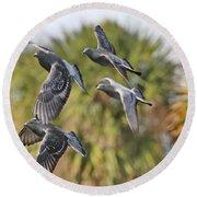 Pigeon Brigade Round Beach Towel