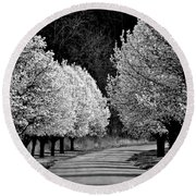 Pigeon Mountain Dogwoods In Black And White Round Beach Towel