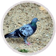 Pigeon Toed Round Beach Towel