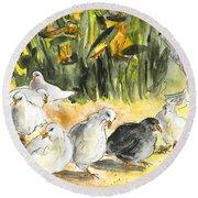 Pigeons In Benidorm Round Beach Towel