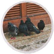 Pigeons Round Beach Towel