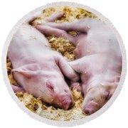 Piglets Round Beach Towel