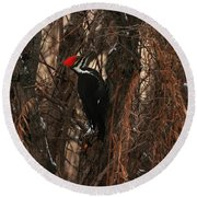 Pileated In Winter Round Beach Towel