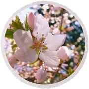 Pin Cherry Blooms Round Beach Towel