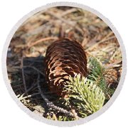 Pine Cone And Small Branch Round Beach Towel