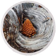 Pine Cone In A Knot  Round Beach Towel