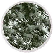 Pine Tree Branches Covered With Snow Round Beach Towel