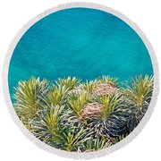 Pine Tree Branches With Turquoise Sea Background Round Beach Towel