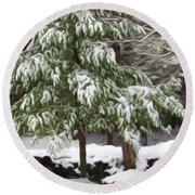 Pine Tree Covered With Snow 2 Round Beach Towel