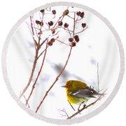 Pine Warbler-img-2143-001 Round Beach Towel