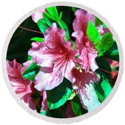 Pink And Green Round Beach Towel