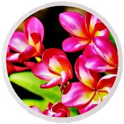 Pink And Red Plumeria Round Beach Towel