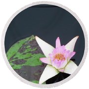 Pink And White Lily Round Beach Towel