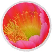 Pink And Yellow Cactus Flower Round Beach Towel