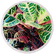 Pink And Yellow Croton Round Beach Towel