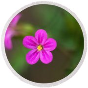 Pink And Yellow Flowers With Green Blurry Background Round Beach Towel