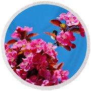 Pink Blossoms Blue Sky 031015a Round Beach Towel