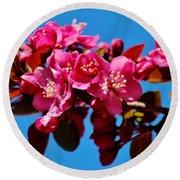 Pink Blossoms Closeup 031015ab Round Beach Towel
