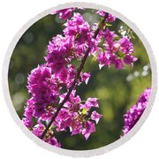 Pink Bougainvillea Sunshine Round Beach Towel