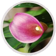 Pink Cala Lily Round Beach Towel