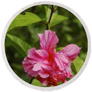 Pink Camellia  Round Beach Towel